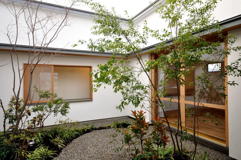 コートハウスの中庭